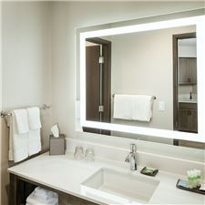 Executive Suite bathroom and vanity